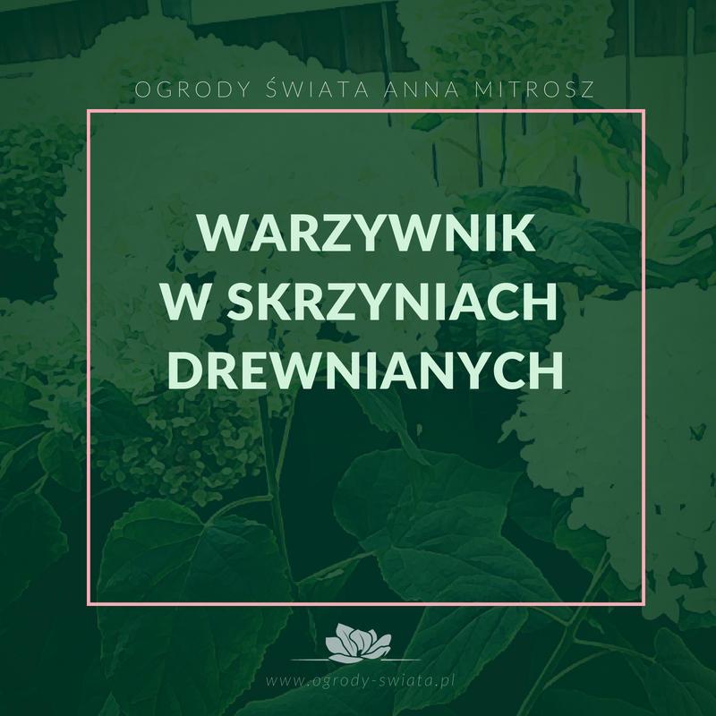 Ogrody Świata Białystok - Projekty ogrodów Białystok